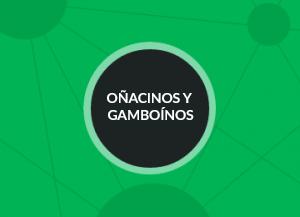 Acceso Oñacinos y Gamboínos